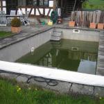 Schwimmbad vorher